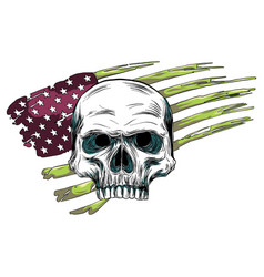 Skull design with colored american flag vector
