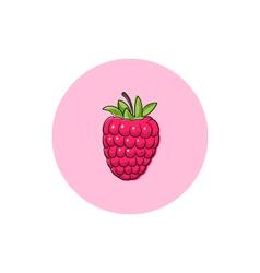 Icon Colorful Raspberries vector image