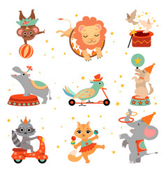 cute funny animals performing in circus show set vector image