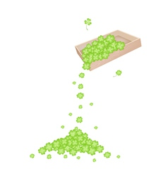 Four Leaf Clovers Dropped from A Wooden Container vector