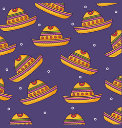 mexican hat background vector image