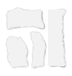realistic varoious ripped paper pieces vector image