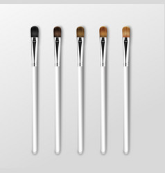 set of professional makeup eye shadow brushes vector image