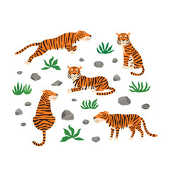 set tigers leaves and stones vector image