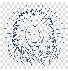 silhouette of a lion in the grass vector image vector image