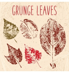 Grunge fallen leaves texture Eps 8 vector image