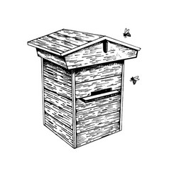 Bee hive and bees engraving vector