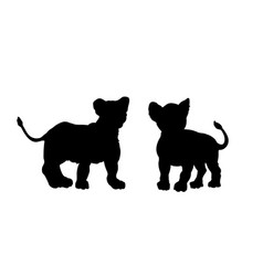 Black silhouette young lions vector