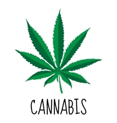 Cannabis leaf Marijuana herb Drug plant vector