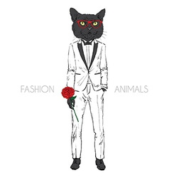 cat dressed up in tuxedo vector image