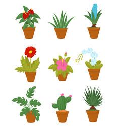 flat set of indoor plants in brown ceramic vector image