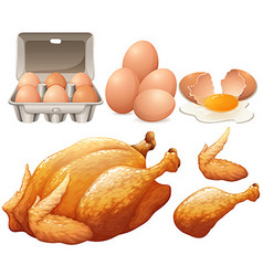 Fried chicken and fresh eggs vector