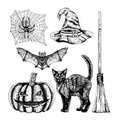 Hand drawn halloween set vector image