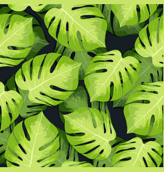 Monstera tropical palm leaves pattern vector