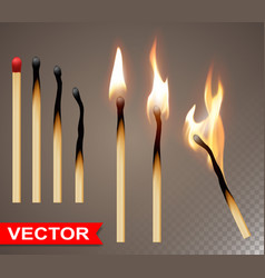 realistic wooden burning matches with flame vector image