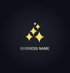 shine star gold logo vector image