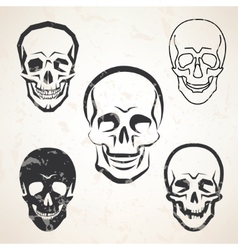 skull sketches set in different styles vector image vector image