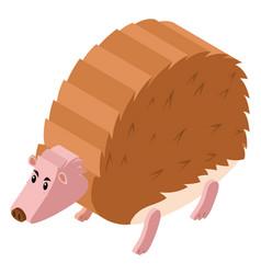 3d design for hedgehog vector image