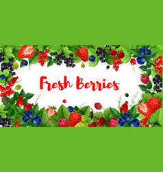 berries and sweet garden fruits banners vector image