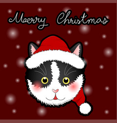 black white cat santa claus greeting card vector image