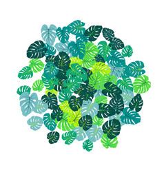 Green tropical jungle leaves scatter vector