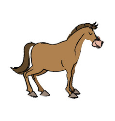 Horse domestic animal farming agricultural vector