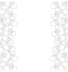 iris flower outline border vector image