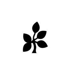 tree branch with leaves icon vector image