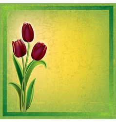abstract green grunge background with red tulips vector image vector image