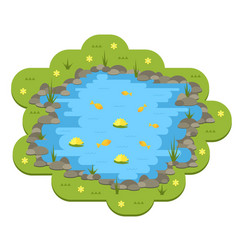 cartoon garden pond with water plants and vector image