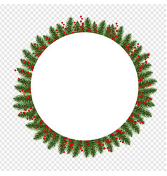 Christmas fir tree banner with holly berry vector