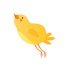 Cute happy baby chicken funny cartoon bird vector