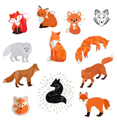 Fox cartoon cute of animal vector