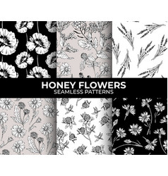 honey flowers modern seamless patterns collection vector image