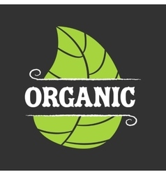 Organic food icon vector