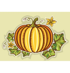 Pumpkin yellow fresh vector image