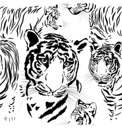 Seamless pattern background tiger skins vector