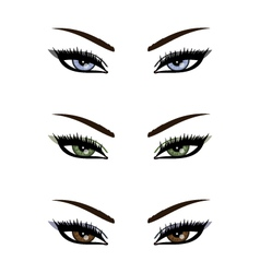 sexy eyes collection vector image