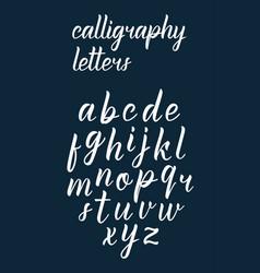 White modern handdrawn latin calligraphy brush scr vector