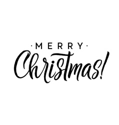 Merry Christmas Calligraphy Template Greeting vector image vector image