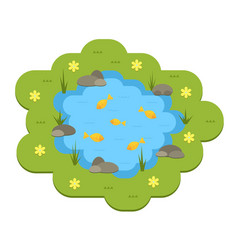 cartoon garden pond with water vector image