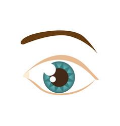 Cartoon human male eye with eyebrow vector