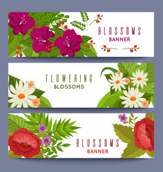 floral banners template with colorful flowers vector image