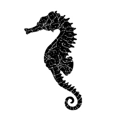 grunge seahorse vector image