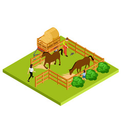 horse farm 3d isometric location isolated vector image