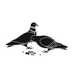 pigeonold age single icon in black style vector image