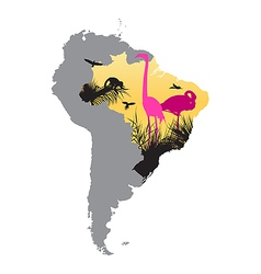 pink flamingos in Brazil vector image