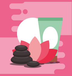 spa wellness related vector image