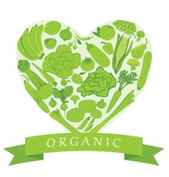 Organic Groceries vector image