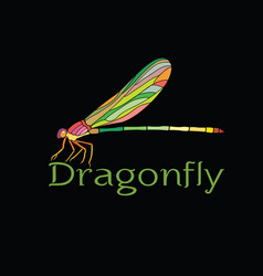 colorful dragonfly designamphipterygidae on vector image vector image